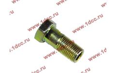 Болт пустотелый М10х1,0 (штуцер топливный) H